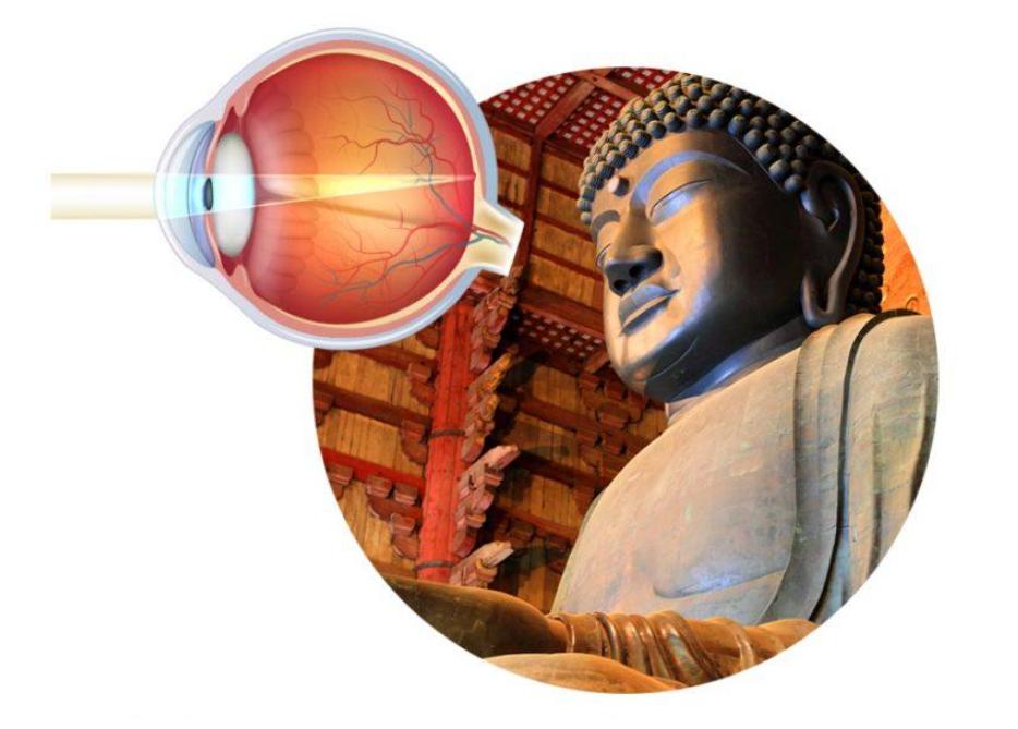 Wat is ayurveda en wat houdt de methode voor de bestrijding van gezichtsstoornissen is
