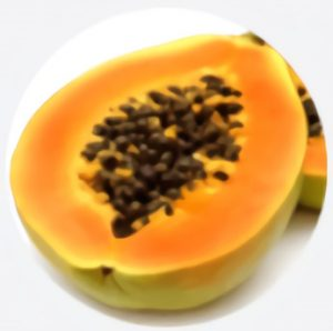 Papaïne van papaja extract